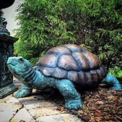 Bronze Medium Turtle...